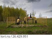 Купить «Industrial gas distribution station», фото № 26429951, снято 14 мая 2017 г. (c) Сергей Эшметов / Фотобанк Лори