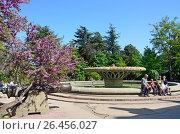 Купить «Парковая зона на Историческом бульваре в городе Севастополь», фото № 26456027, снято 25 апреля 2018 г. (c) Овчинникова Ирина / Фотобанк Лори