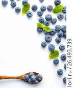 Купить «Blueberries isolated on white background», фото № 26493739, снято 17 февраля 2017 г. (c) Ольга Сергеева / Фотобанк Лори