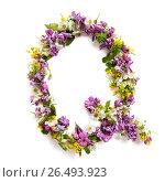 """Буква """"Q"""" сделанная из различных мелких цветов и листьев на белом фоне. Стоковое фото, фотограф Olesya Tseytlin / Фотобанк Лори"""