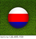 Soccer green grass pattern field with Russia flag background. Стоковая иллюстрация, иллюстратор Elena Titova / Фотобанк Лори