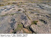 Купить «Dinosaur footprints on sandstone, Germany, Lower Saxony, Obernkirchener Sandsteinbrueche, Obernkirchen», фото № 26500267, снято 18 июля 2014 г. (c) age Fotostock / Фотобанк Лори