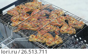 Купить «Shish kebab from poultry meat on skewers is cooked on a brazier in the winter», видеоролик № 26513711, снято 1 мая 2017 г. (c) Mikhail Davidovich / Фотобанк Лори