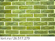 Купить «Зелёная кирпичная стена», фото № 26517279, снято 6 июня 2013 г. (c) Алёшина Оксана / Фотобанк Лори