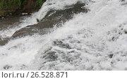 Купить «Falling down spring waterfall», видеоролик № 26528871, снято 22 мая 2017 г. (c) Юрий Брыкайло / Фотобанк Лори