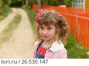 Купить «Портрет красивой девочки с хвостиками», эксклюзивное фото № 26530147, снято 9 июня 2017 г. (c) Юрий Морозов / Фотобанк Лори