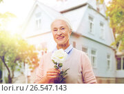 Купить «happy senior woman with rose flower at home», фото № 26547143, снято 10 июля 2015 г. (c) Syda Productions / Фотобанк Лори