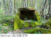 Купить «Сочи, Лазаревский район, частично разрушенный корытообразный  дольмен на склоне горы Джемалта», фото № 26548579, снято 29 марта 2020 г. (c) glokaya_kuzdra / Фотобанк Лори