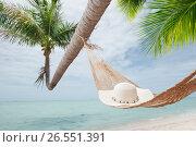 Купить «View of nice hummock with palms around in tropical environment», фото № 26551391, снято 29 сентября 2016 г. (c) Дмитрий Эрслер / Фотобанк Лори