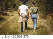 Купить «Rear view of couple walking at olive farm», фото № 26569575, снято 22 марта 2017 г. (c) Wavebreak Media / Фотобанк Лори