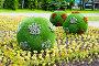 Клумба с футбольными мячами на Крестовском острове. Срнкт-Петербург, эксклюзивное фото № 26574327, снято 25 июня 2017 г. (c) Александр Щепин / Фотобанк Лори