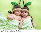 Купить «Twins brothers babies weared in acorn hats», фото № 26585563, снято 26 сентября 2012 г. (c) Оксана Кузьмина / Фотобанк Лори