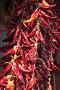 Red hot dry peppers hanging, фото № 26588115, снято 5 мая 2017 г. (c) Евгений Сергеев / Фотобанк Лори