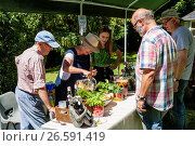 Купить «A Woman Serves Cups Of 'Pimms' A Traditional Summer Alchoholic Drink At The Chiddingly Fete, Chiddingly, East Sussex, UK.», фото № 26591419, снято 10 июня 2017 г. (c) age Fotostock / Фотобанк Лори