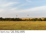 Купить «maasai mara national reserve savanna at africa», фото № 26592895, снято 21 февраля 2017 г. (c) Syda Productions / Фотобанк Лори