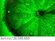 Купить «Lime with bubbles on green background», фото № 26595659, снято 25 июня 2017 г. (c) Евдокимов Максим / Фотобанк Лори