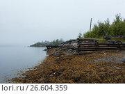 White sea, old slip dock, Chupa Karelia, white polar night, фото № 26604359, снято 19 июня 2015 г. (c) Сурикова Ирина / Фотобанк Лори