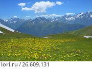 Купить «Caucasus in summer», фото № 26609131, снято 26 июня 2017 г. (c) александр жарников / Фотобанк Лори
