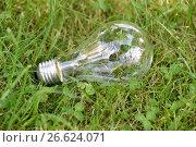 Лампочка лежит на траве (2017 год). Редакционное фото, фотограф Юрий Морозов / Фотобанк Лори