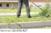 Gardener man mows grass to make beautiful design. Стоковое видео, видеограф worker / Фотобанк Лори