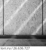 Купить «Abstract square empty white interior background», иллюстрация № 26636727 (c) EugeneSergeev / Фотобанк Лори