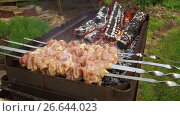 Купить «meat on skewers and firewood in brazier outdoors», видеоролик № 26644023, снято 24 июня 2017 г. (c) Syda Productions / Фотобанк Лори
