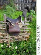 Купить «Седло на плетне», эксклюзивное фото № 26661107, снято 10 июля 2017 г. (c) Анатолий Матвейчук / Фотобанк Лори