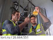 Купить «Low angle view of coworkers examining beer in beaker», фото № 26664551, снято 28 марта 2017 г. (c) Wavebreak Media / Фотобанк Лори