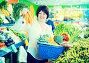 Mature woman buying fresh vegetables, фото № 26679619, снято 10 марта 2017 г. (c) Яков Филимонов / Фотобанк Лори