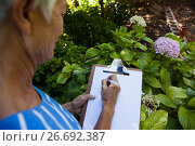 Купить «Midsection of senior woman writing on clipboard against plants», фото № 26692387, снято 13 февраля 2017 г. (c) Wavebreak Media / Фотобанк Лори