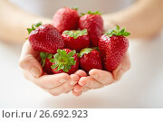 Купить «close up of young woman hands holding strawberries», фото № 26692923, снято 28 апреля 2015 г. (c) Syda Productions / Фотобанк Лори