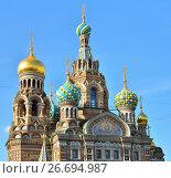 Купить «Купола православного собора Спас-на-Крови», фото № 26694987, снято 16 июня 2017 г. (c) Максим Мицун / Фотобанк Лори