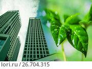 Купить «Современные высотные здания на фоне зеленого растения», фото № 26704315, снято 15 декабря 2017 г. (c) Сергеев Валерий / Фотобанк Лори