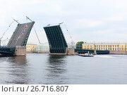 Купить «Разведенный Дворцовый мост. Санкт-Петербург», эксклюзивное фото № 26716807, снято 28 июля 2017 г. (c) Александр Щепин / Фотобанк Лори