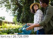 Купить «Romantic couple watering plants with watering can in garden», фото № 26726099, снято 13 февраля 2017 г. (c) Wavebreak Media / Фотобанк Лори