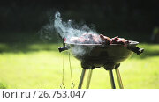Купить «barbecue meat on grill or brazier outdoors», видеоролик № 26753047, снято 17 июля 2017 г. (c) Syda Productions / Фотобанк Лори