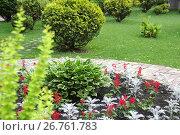 Купить «Декоративные цветы и кустарники в саду», фото № 26761783, снято 5 июля 2017 г. (c) Илюхина Наталья / Фотобанк Лори