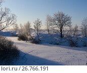 Купить «Иней на деревьях», фото № 26766191, снято 7 февраля 2012 г. (c) Игорь Камаев / Фотобанк Лори