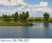 Купить «Облака и деревья на берегу озера», фото № 26766207, снято 11 июля 2011 г. (c) Игорь Камаев / Фотобанк Лори