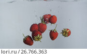 Купить «Strawberries falling into water», видеоролик № 26766363, снято 12 августа 2017 г. (c) Илья Шаматура / Фотобанк Лори