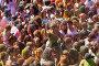 Festival de los colores Holi in Barcelona, фото № 26771967, снято 12 апреля 2015 г. (c) Яков Филимонов / Фотобанк Лори