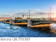 Санкт-Петербург. Биржевой мост. The Exchange Bridge (2017 год). Стоковое фото, фотограф Baturina Yuliya / Фотобанк Лори