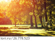 Купить «Autumn landscape, autumn park in with golden autumn trees lit by sunlight», фото № 26778523, снято 15 августа 2017 г. (c) Зезелина Марина / Фотобанк Лори