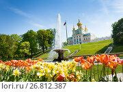Купить «French Bowl Fountain in Lower Park of Peterhof», фото № 26812387, снято 22 мая 2016 г. (c) Сергей Новиков / Фотобанк Лори