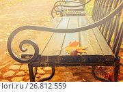 Купить «Autumn landscape - yellowed autumn leaf on the wooden lonely bench in the autumn park», фото № 26812559, снято 3 октября 2016 г. (c) Зезелина Марина / Фотобанк Лори