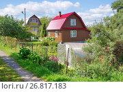 Купить «Дачный поселок летом», эксклюзивное фото № 26817183, снято 12 августа 2017 г. (c) Елена Коромыслова / Фотобанк Лори