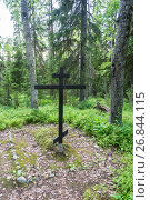 Купить «The place of mass burials of those repressed in the 1920 – 1930s on the Sekirnaya mountain on Solovki», фото № 26844115, снято 26 июля 2017 г. (c) Валерий Смирнов / Фотобанк Лори