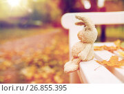 Купить «toy rabbit on bench in autumn park», фото № 26855395, снято 12 октября 2016 г. (c) Syda Productions / Фотобанк Лори