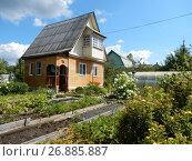 Купить «Деревянный дом на дачном участке в шесть соток», эксклюзивное фото № 26885887, снято 5 августа 2017 г. (c) lana1501 / Фотобанк Лори