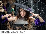 Купить «Evil witch in a hat cooks a potion in a cauldron», фото № 26901607, снято 3 октября 2016 г. (c) Константин Лабунский / Фотобанк Лори